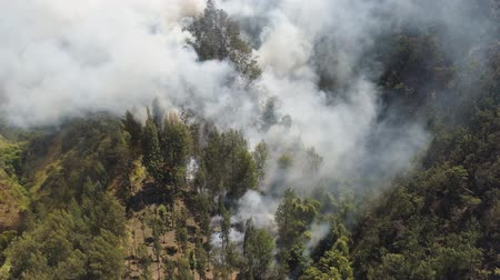 bush fire : fire in mountain forest. aerial view forest fire and smoke on slopes hills. wild fire in mountains in tropical forest, Java Indonesia. natural disaster fire in Southeast Asia