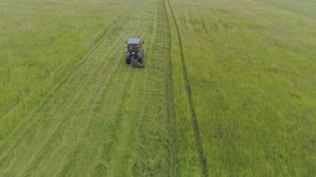 mounted : Tractor mowing grass with a disc mower for animal feed. Aerial view Preparation feed silage with mower mounted on tractor. Stock Footage
