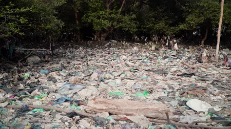 종류 : Garbage environmental pollution in mangrove ecological problem in asia. garbage, trash on shore in mangroves, all kinds, plastic bottles, rubber, aluminum and glass cans, java, indonesia.Garbage pollu 무비클립