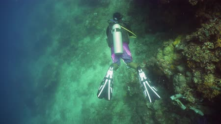 deep sea exploration : Scuba divers explores underwater coral reef and watching fish.Scuba diver underwater in tropical sea.Tropical fish on coral reef. Diving and snorkeling in tropical sea.