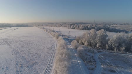 tampa : aerial view winter landscape countryside road through winter field with forest. winter forest on sunny day. winter in countryside Stock Footage