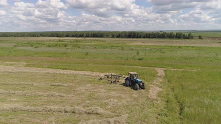 hay harvest : Aerial, view agricultural machinery with wheeled rake makes ranks beveled hay.Tractor which is lining up dried grass getting it ready for pickup so it can be used as animal fodder summer day. Stock Footage