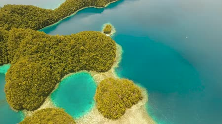 zátoka : aerial seascape islands in bays and lagoons with turquoise water bucas grande, sohoton cove. islands covered with green tropical forest surrounded by beautiful bays and lagoons tropical seascape blue sea, azure lagoon. Travel concept Dostupné videozáznamy