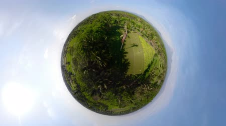 сферический : little planet view tropical landscape, rice fields, farmers land, mountains. aerial view farmland with agricultural crops in rural areas Indonesia, Jawa Aerial footage. Стоковые видеозаписи