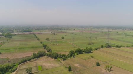 poder : Electricity pylons bearing power supply across agricultural land with sown green, rice fields in countryside. aerial view power pylons and high voltage lines java, indonesia.High voltage metal post, tower. Electric Power Transmission Lines over trees. far