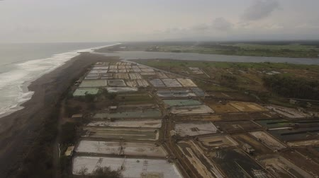 tlen : shrimp, prawn farming with with aerator pump for oxygenation water near ocean. Shrimp farms aerial view aquaculture business exported international market. java, indonesia Wideo