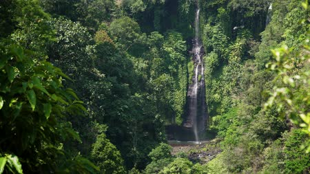 ztrojnásobit : waterfall in green rainforest. triple tropical waterfall Sekumpul in mountain jungle. Bali,Indonesia. Travel concept. Aerial footage.