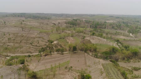 засушливый : agricultural land in rural areas with farmlands, fields with crops, trees in arid hilly terrain. aerial view growing crops in asia in hilly areas Indonesia.