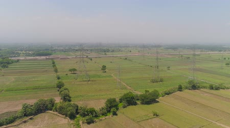 terra : Electricity pylons bearing power supply across agricultural land with sown green, rice fields in countryside. aerial view power pylons and high voltage lines java, indonesia.High voltage metal post, tower. Electric Power Transmission Lines over trees. far