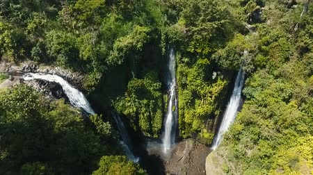ztrojnásobit : Waterfall in green rainforest. Aerial view of triple waterfall Sekumpul in the mountain jungle. Bali,Indonesia. Travel concept. Aerial footage.