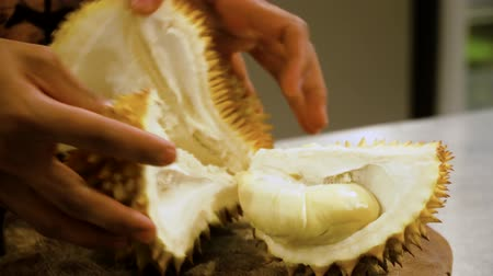 mal cheiroso : hand with knife peeling and cuts durian fruit. caucasian man peeling durian in kitchen room Stock Footage