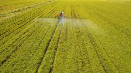 termés : Aerial view tractor spraying the chemicals on the large green field. Spraying the herbicides on the farm land. Treatment of crops against weeds.aerial footage.