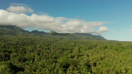 mindanao : Mountains covered rainforest, trees and blue sky with clouds, aerial view. Camiguin, Philippines. Mountain landscape on tropical island with mountain peaks covered with forest. Slopes of mountains with evergreen vegetation. Stock Footage