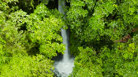 mindanao : Waterfall in green rainforest. Tropical Tuasan Falls in mountain jungle, aerial view. waterfall in the tropical forest. Camiguin, Philippines, Mindanao