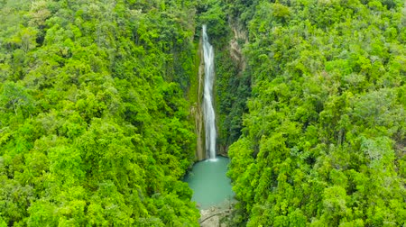 cebu : Aerial top view jungle Waterfall in a tropical forest surrounded by green vegetation. Mantayupan Falls in mountain jungle. Philippines, Cebu.