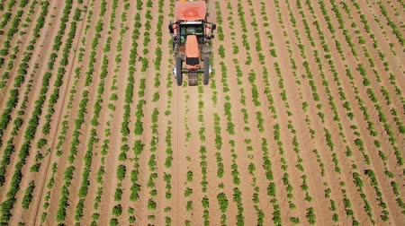 ground : Spraying with pesticides and herbicides crops aerial view. Tractor with pesticide fungicide insecticide sprayer on farm land. Stock Footage