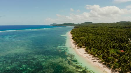 siargao : Tropical island with sand beach and ocean with surf and coral reef top view. Summer and travel vacation concept