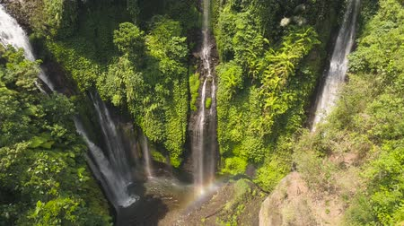 ztrojnásobit : tropical waterfall in green rainforest. Aerial view triple waterfall Sekumpul in mountain jungle. Bali,Indonesia. Travel concept. Aerial footage. Dostupné videozáznamy