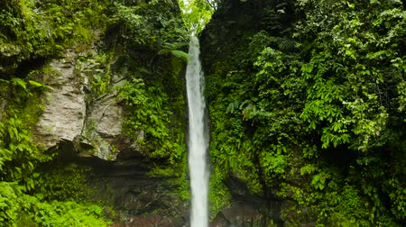 mindanao : Waterfall in green rainforest. Tropical Tuasan Falls in mountain jungle. waterfall in the tropical forest. Camiguin, Philippines, Mindanao