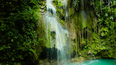 cebu : Beautiful waterfall in green forest, top view. Tropical Cambais Falls in mountain jungle, Philippines, Cebu. Waterfall in the tropical forest. Stock Footage
