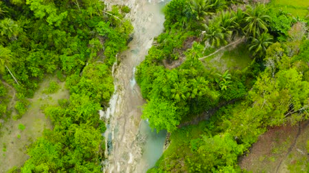 cebu : Waterfall in the rainforest jungle from above. Tropical Lusno falls in mountain jungle. Philippines, Cebu. Stock Footage