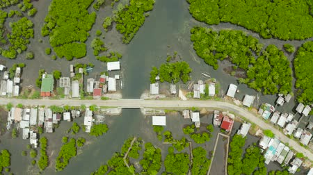 mangue : Highway through the mangrove forest passing through the village, aerial view. Siargao island, Philippines. Vídeos