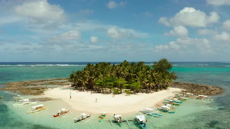 trópicos : Tropical island with sand beach, palm trees by atoll with coral reef, top view. Guyam island, Philippines, Siargao. Summer and travel vacation concept.