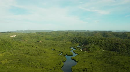 vista de cima : Tropical island with rainforest and mangrove forest, jungle-covered mountains. Siargao,Philippines.