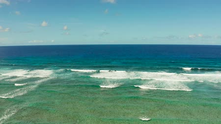 recife : Seascape: blue ocean and surf waves crashing on a coral reef top view. Summer and travel vacation concept
