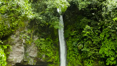 beekje : Waterfall in green rainforest. Tropical Tuasan Falls in mountain jungle. waterfall in the tropical forest. Camiguin, Philippines, Mindanao