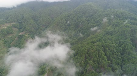 dağlık : Aerial view mountains covered forest, trees in clouds and fog. Cordillera region. Luzon, Philippines. Slopes of mountains with evergreen vegetation. Mountainous tropical landscape.