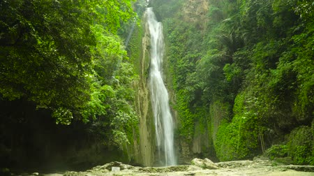 cebu : Mantayupan Falls in the jungle, island of Cebu, Philippines. Waterfall in the green forest. Stock Footage