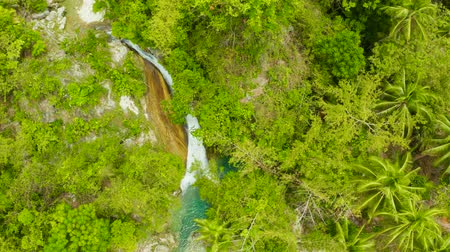 cebu : Beautiful waterfall in green forest, top view. Tropical Inambakan Falls in mountain jungle, Philippines, Cebu. Waterfall in the tropical forest. Stock Footage