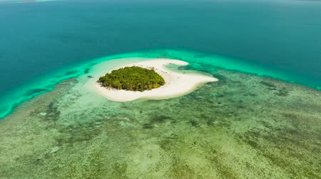 balabac : Tropical island with sandy beach by atoll with coral reef and blue sea, aerial view. Patawan island with sandy beach. Summer and travel vacation concept.