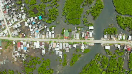 siargao island : Highway through the mangrove forest passing through the village, aerial view. Siargao island, Philippines. Stock Footage