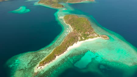 white sand : aerial view tropical island with sand white beach, palm trees. Malcapuya, Philippines, Palawan. Tropical landscape with lagoon, coral reef Stock Footage