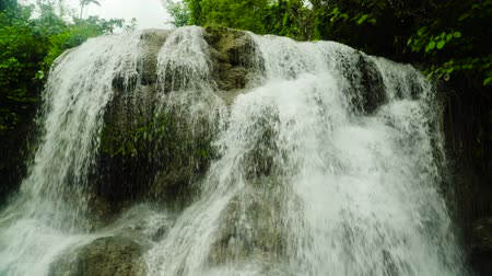 теснина : Waterfall in the rainforest jungle. Tropical Lusno falls in mountain jungle. Philippines, Cebu. Стоковые видеозаписи
