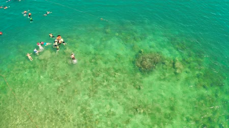 palawan : Tourists snorkeling over coral reef with clear blue ocean water, aerial view. People swim in the transparent sea between coral reefs. Summer and travel vacation concept.