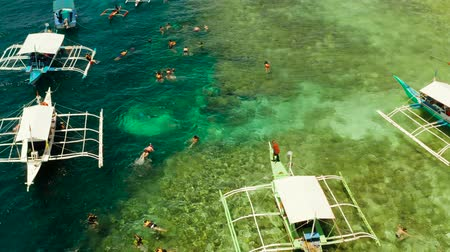 snorkeling : Tourists snorkeling over coral reef in turquoise water, aerial view. Moalboal, Philippines. People swim in the transparent sea between coral reefs. Summer and travel vacation concept.