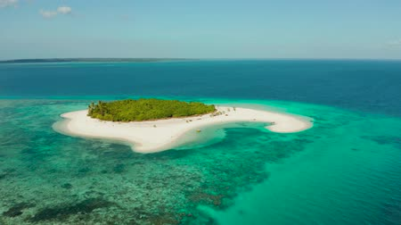 island hopping : Tropical island with beautiful beach, palm trees and turquoise water view from above. Patawan island with sandy beach. Summer and travel vacation concept. Stock Footage