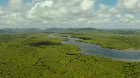 siargao island : Tropical island covered with green rainforest, mangroves with hills and mountains, aerial view. Cloudy landscape over the island. Siargao, Philippines. Stock Footage