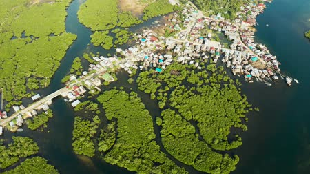 gyertyafa : Town in wetlands and mangroves on the ocean coastline from above. Siargao island, Philippines.