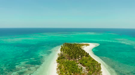 balabac : Travel concept: tropical island on an atoll with beautiful sandy beach by coral reef from above. Canimeran Island and coral reef. Summer and travel vacation concept.