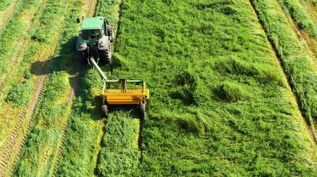 mechanization : Aerial view of a tractor mowing a green fresh grass field, a farmer in a modern tractor mowing a green fresh grass field on a sunny day