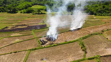economia rural : The burning of rice straw in the fields. Smoke from the burning of rice straw in checks. Farmers burn straw to plow rice fields. Landscape with agricultural fields, top view. Luzon, Philippines.