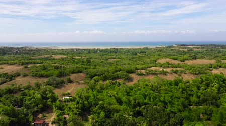 duin : Beautiful landscape with trees and sea in the distance, aerial view. Sand Dunes of Paoay, Ilocos norte, Philippines. Summer and travel vacation concept.