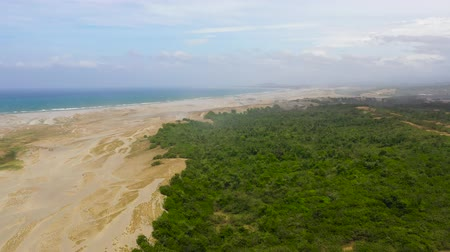 dune : The Sand Dunes of Paoay, Ilocos norte, Philippines. Landscape with trees and sand hills near the ocean. Summer and travel vacation concept. Stock Footage