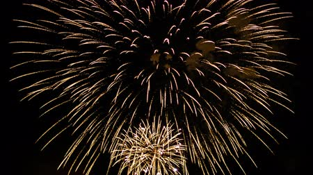 holidays : Colorful fireworks at holiday night