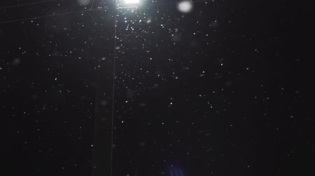 snow flurry : Snow falling with streetlight beams at night. Loop able snow fall background video.