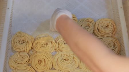 yelow : Fresh Pasta Tagliatelle from a Traditional Pasta Machine. Close up